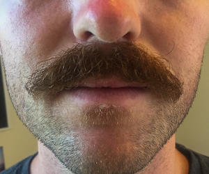 Check out Nick The Moustache's Profile