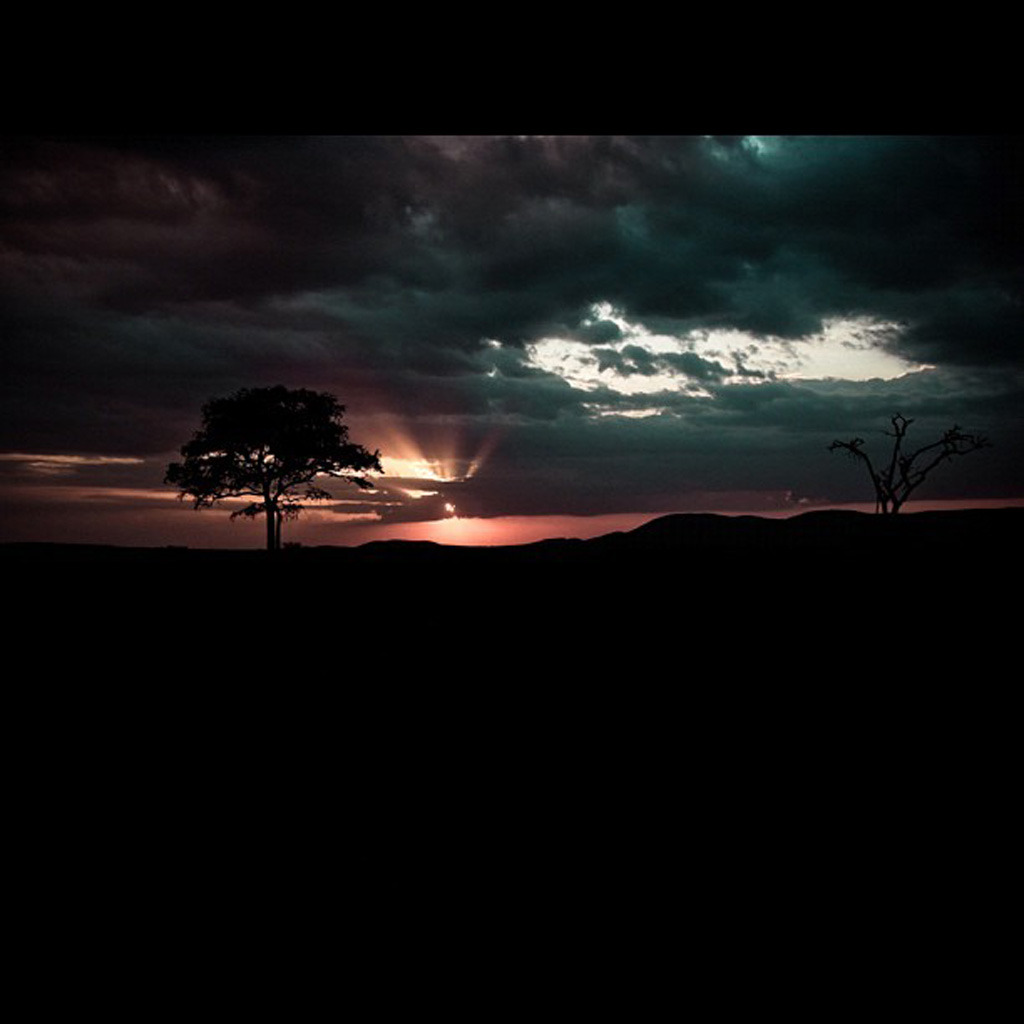 A photo of Africa by Chris Benchetlet