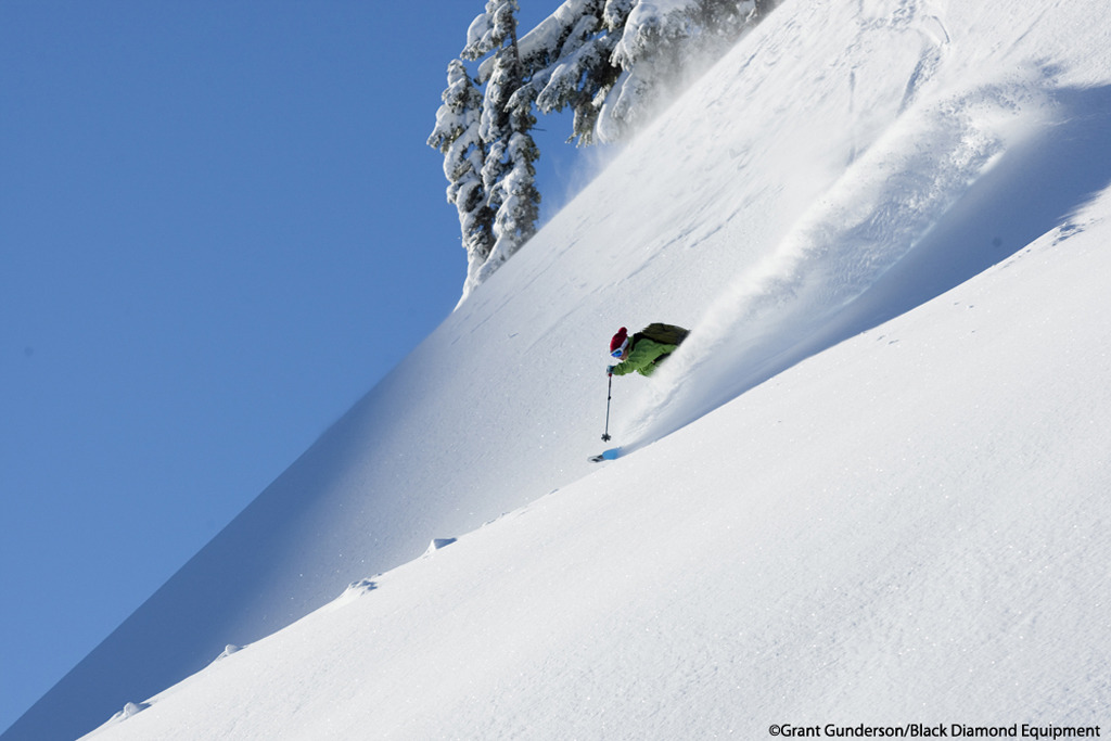 Angel Collinson Skis Powder