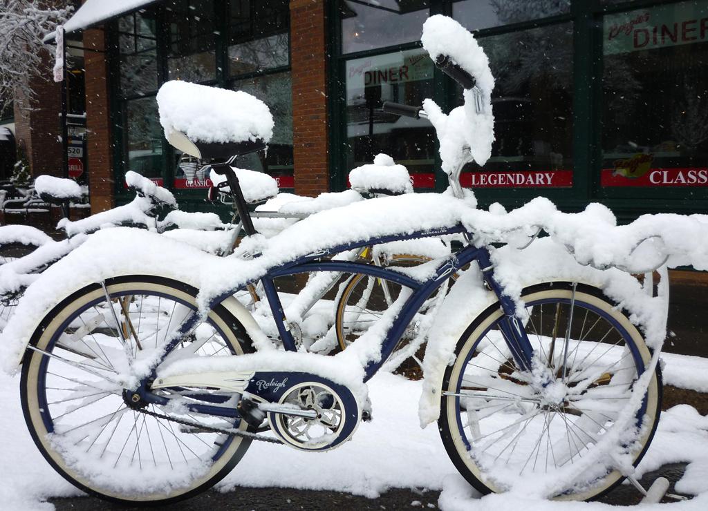 Early Snow In Aspen