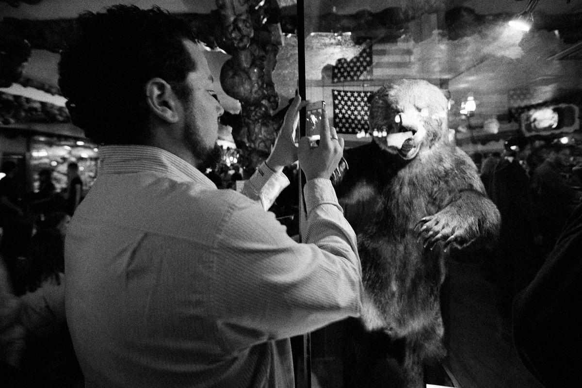 Brain Farm Digital Cinema's Curt Morgan Instagram's The Bar Bear