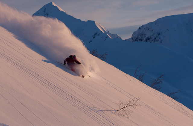 Sage Cattabriga'Alosa taking advantage of the early season light in AK this time of year.