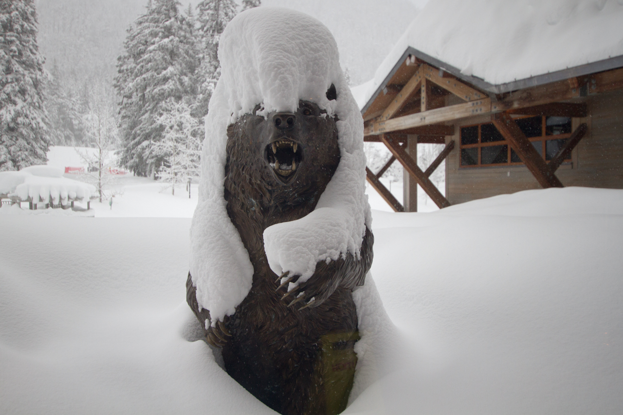 The Alyeska Bear showing some signs of accumulation.
