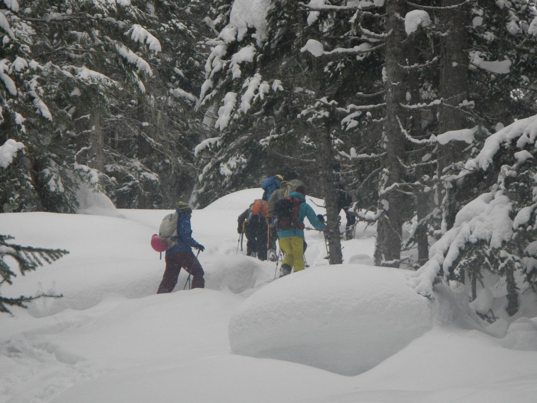 Hankin Evelyn Backcountry Ski Area