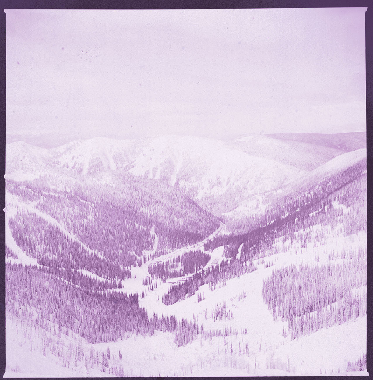 Whitewater Ski Resort by Lindsey Ross