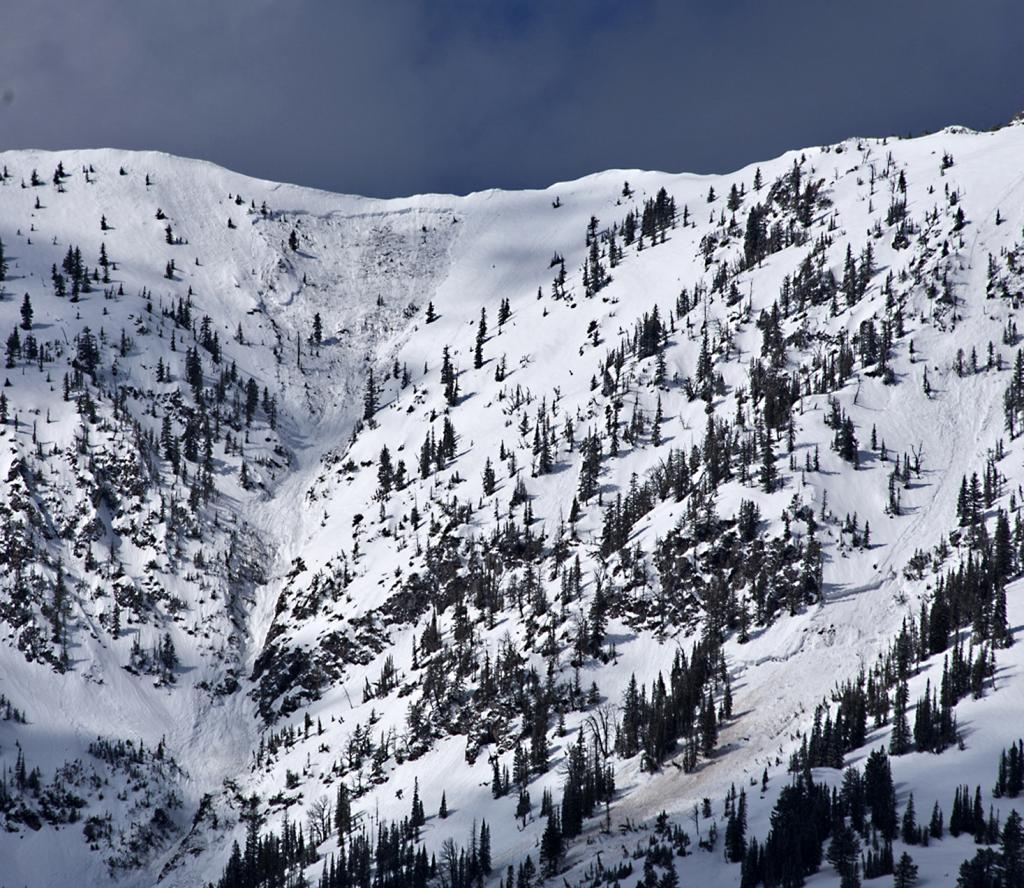 Another Bridger Bowl avalanche