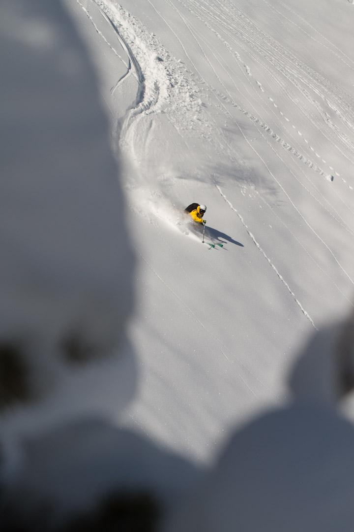 Brody Levin skis Alta by Jim Harris