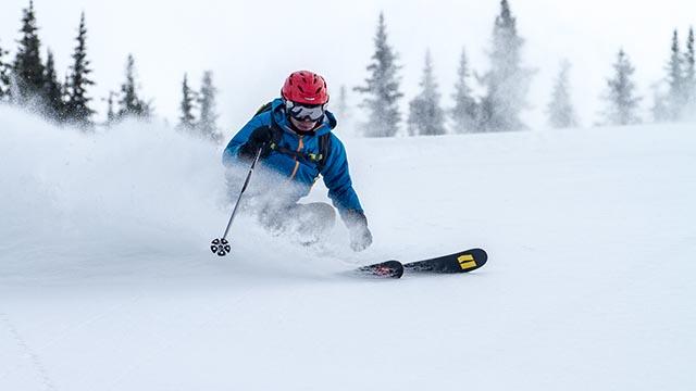Selkirk Wilderness Skiing Dr Powder