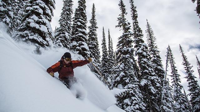 Selkirk Wilderness Skiing Sam Petri