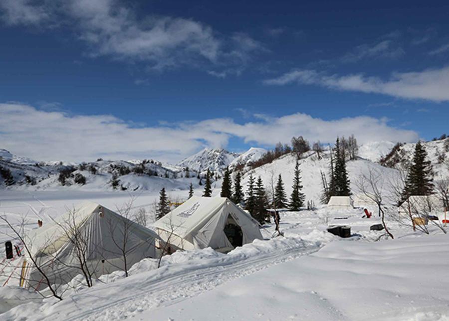 Fantasy Camp Canvas Tents