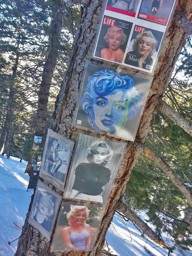 Marilyn-Monroe-shrine-Ajax-crowdtrip-TGR.jpg