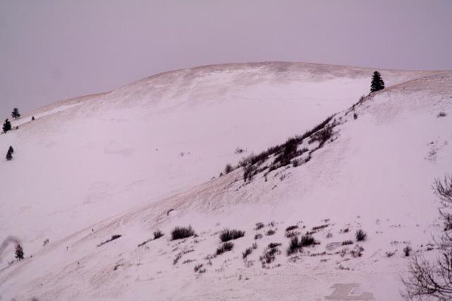 luke-laird-julbo-avalanche.jpg