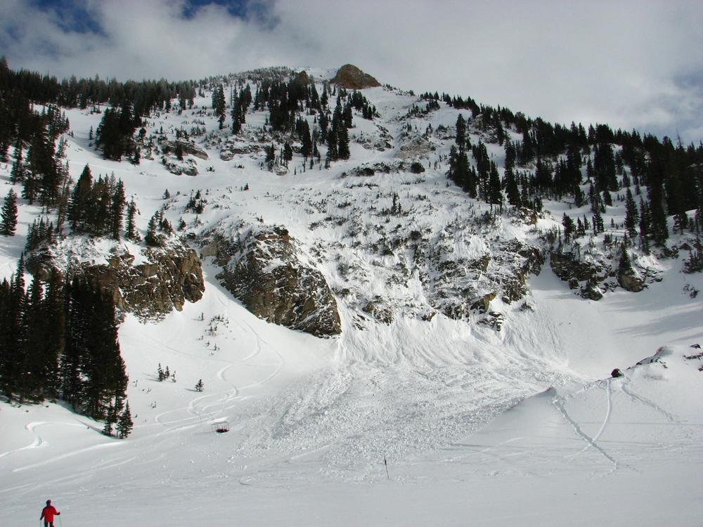 fwt-snowbird-avalanche_2014_.jpg