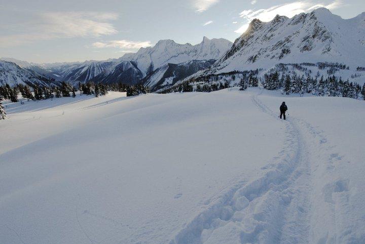 Jumbo Glacier Project