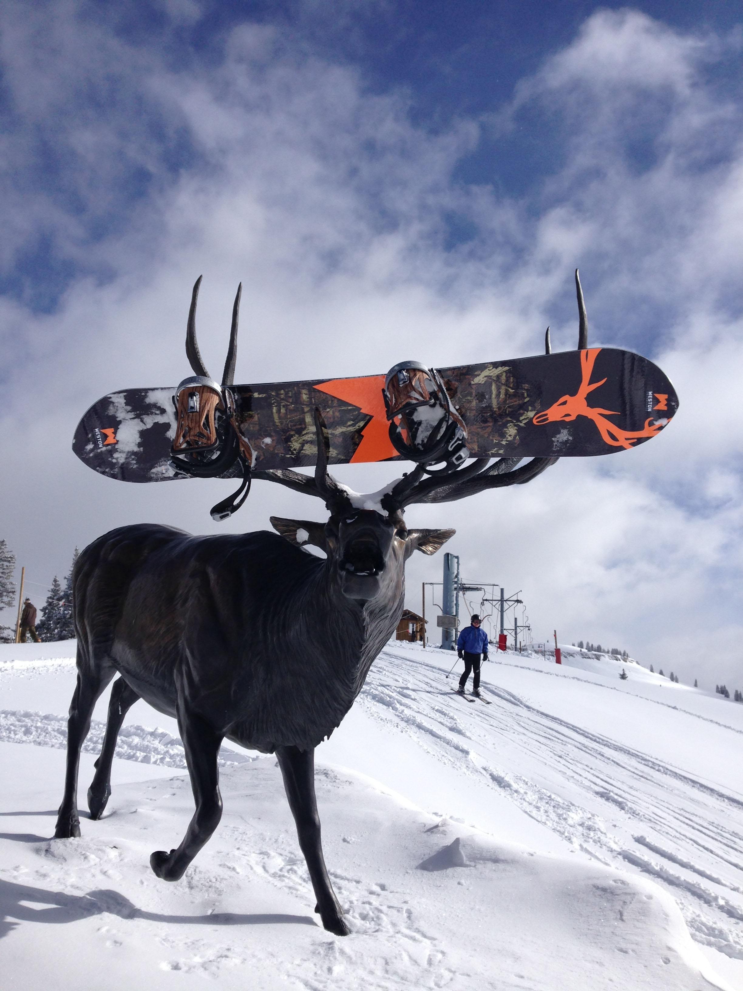Two Elk640