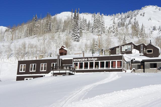 snowpine-lodge-alta-tgr-crowdtrip.jpg